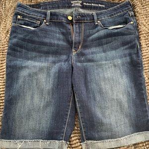 Levi Long shorts